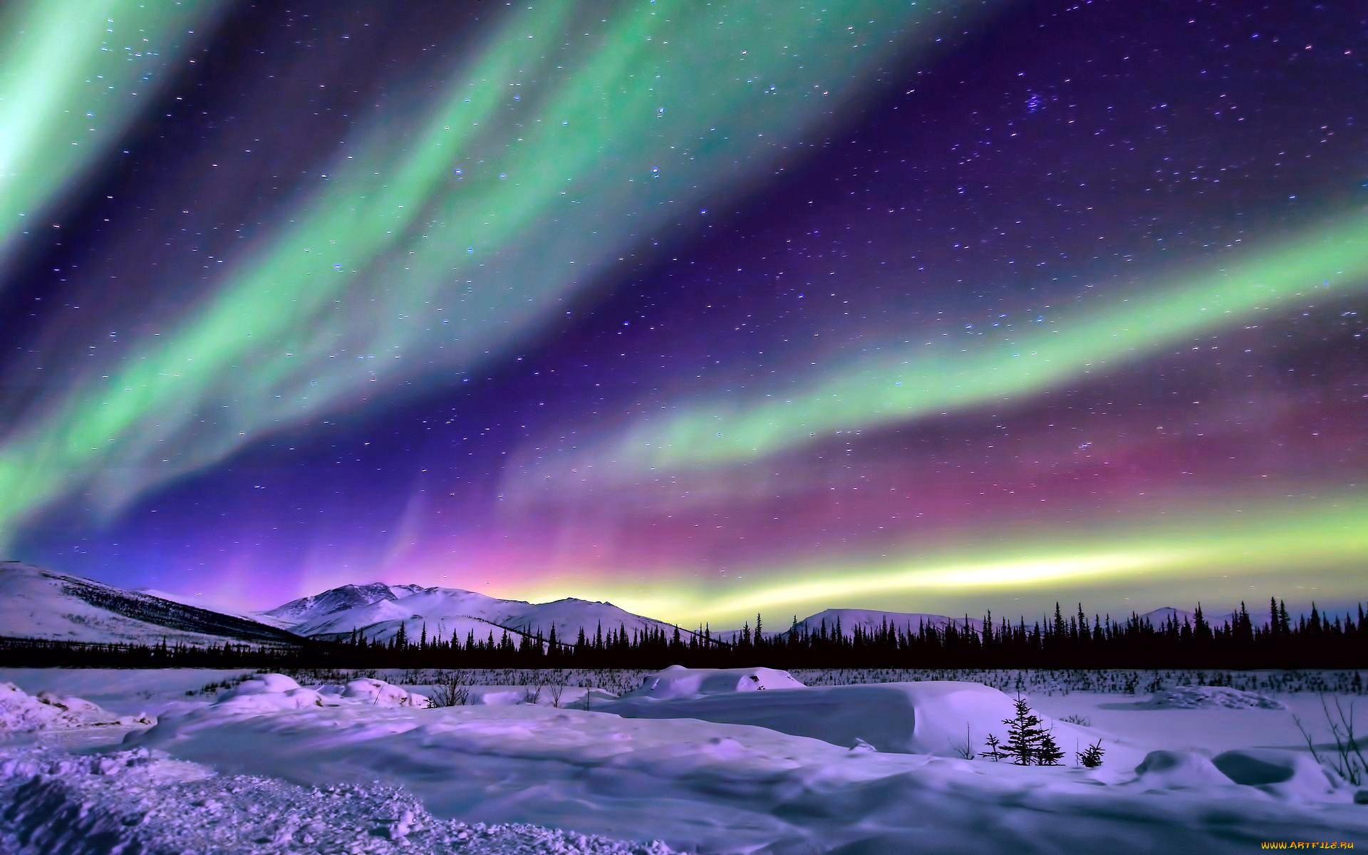 картинки северного сияния зимой узнала сразу
